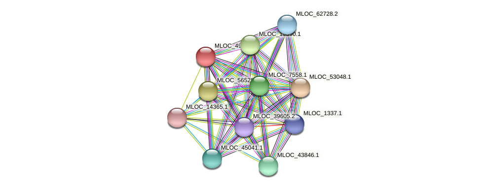 MLOC_49625.2 protein (Hordeum vulgare) - STRING interaction network
