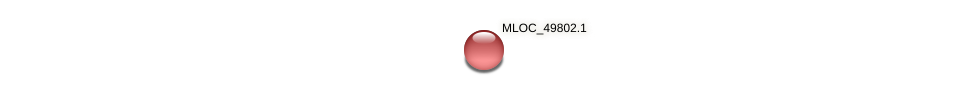MLOC_49802.1 protein (Hordeum vulgare) - STRING interaction network