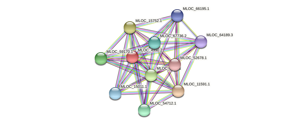 MLOC_4990.2 protein (Hordeum vulgare) - STRING interaction network