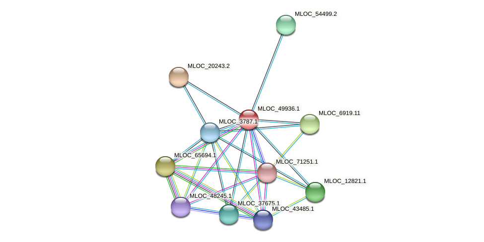 MLOC_49936.1 protein (Hordeum vulgare) - STRING interaction network