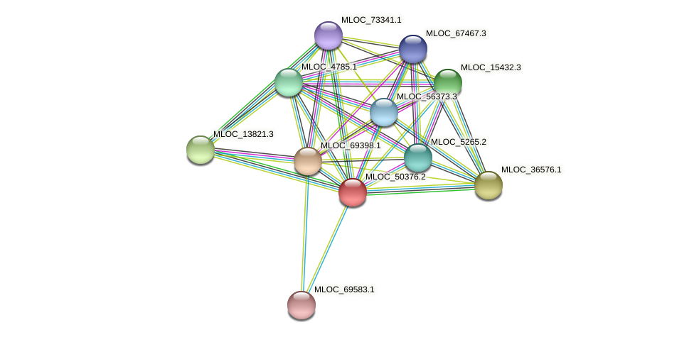 MLOC_50376.2 protein (Hordeum vulgare) - STRING interaction network
