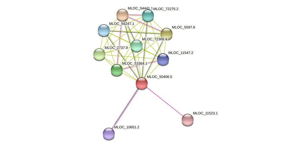 MLOC_50406.5 protein (Hordeum vulgare) - STRING interaction network