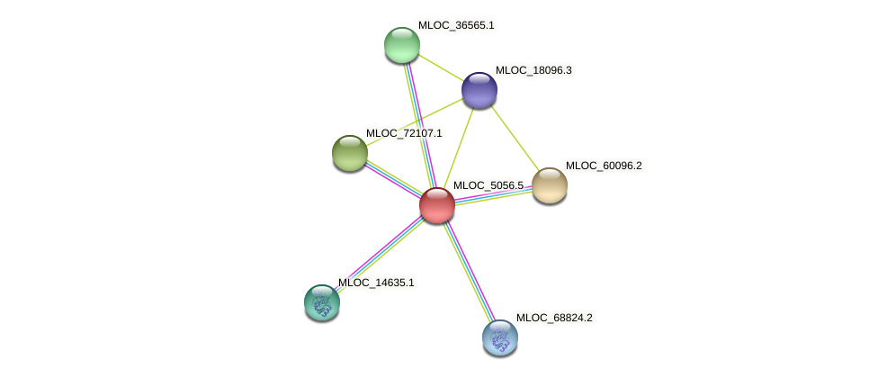 MLOC_5056.5 protein (Hordeum vulgare) - STRING interaction network
