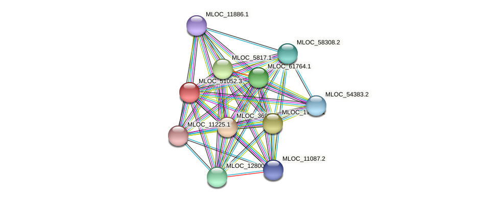 MLOC_51052.3 protein (Hordeum vulgare) - STRING interaction network