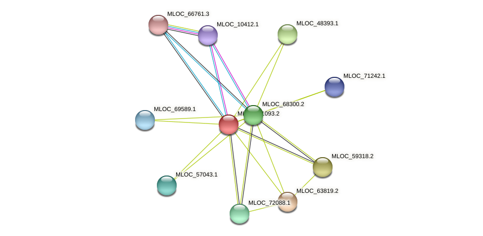 MLOC_51093.2 protein (Hordeum vulgare) - STRING interaction network