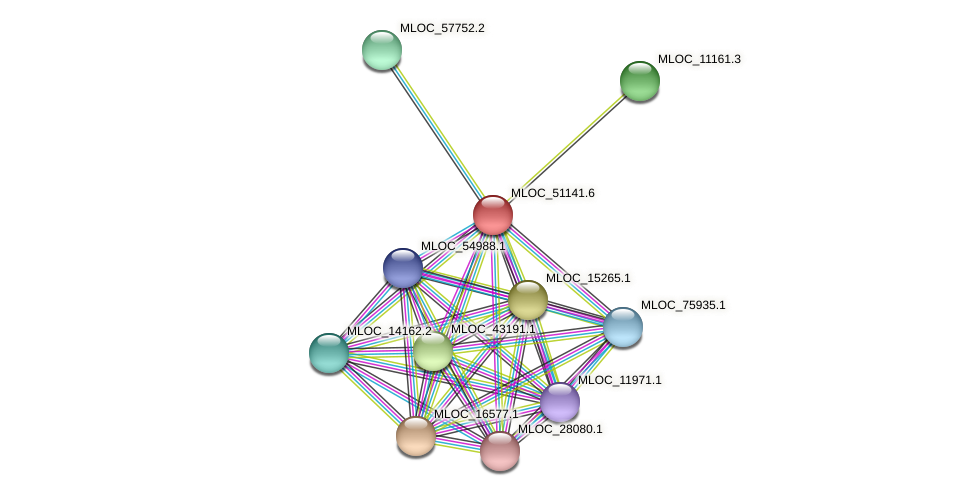 MLOC_51141.6 protein (Hordeum vulgare) - STRING interaction network