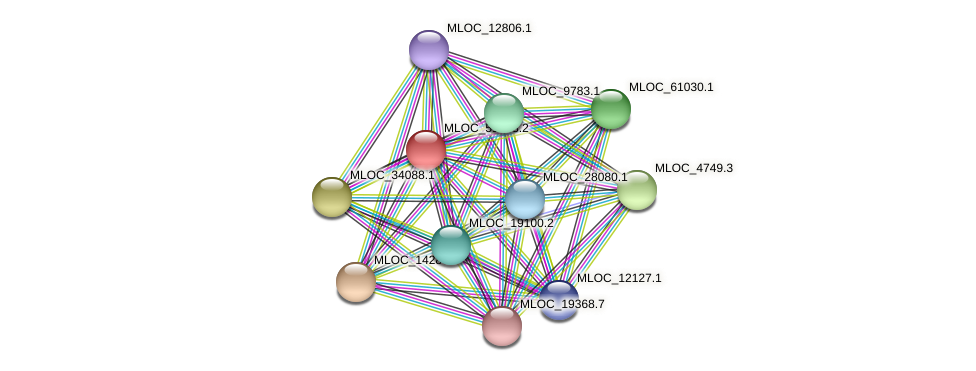 MLOC_51243.2 protein (Hordeum vulgare) - STRING interaction network