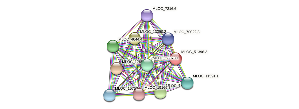 MLOC_51396.3 protein (Hordeum vulgare) - STRING interaction network