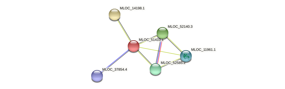 MLOC_51410.1 protein (Hordeum vulgare) - STRING interaction network
