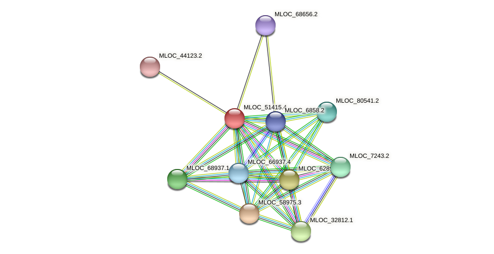 MLOC_51415.4 protein (Hordeum vulgare) - STRING interaction network
