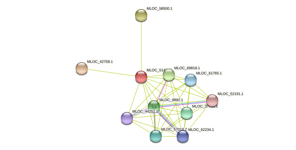 MLOC_51464.1 protein (Hordeum vulgare) - STRING interaction network