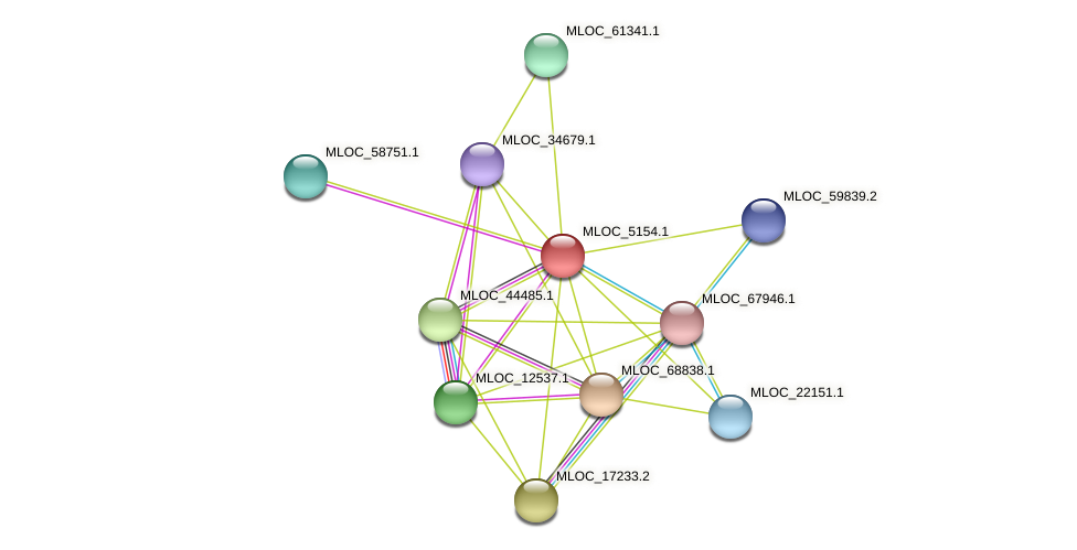 MLOC_5154.1 protein (Hordeum vulgare) - STRING interaction network