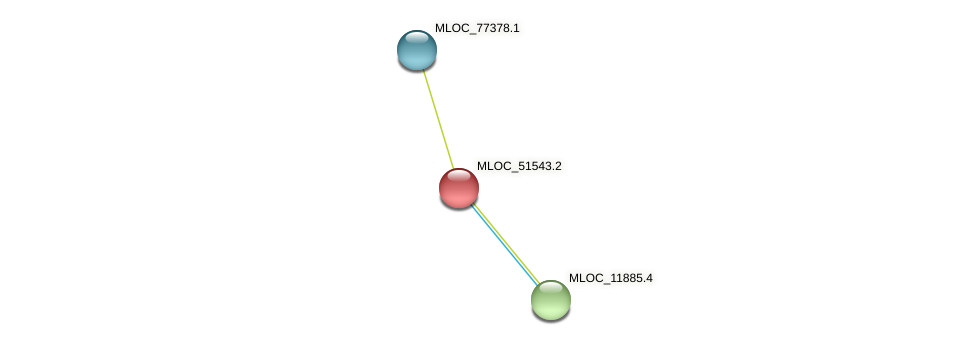 MLOC_51543.2 protein (Hordeum vulgare) - STRING interaction network