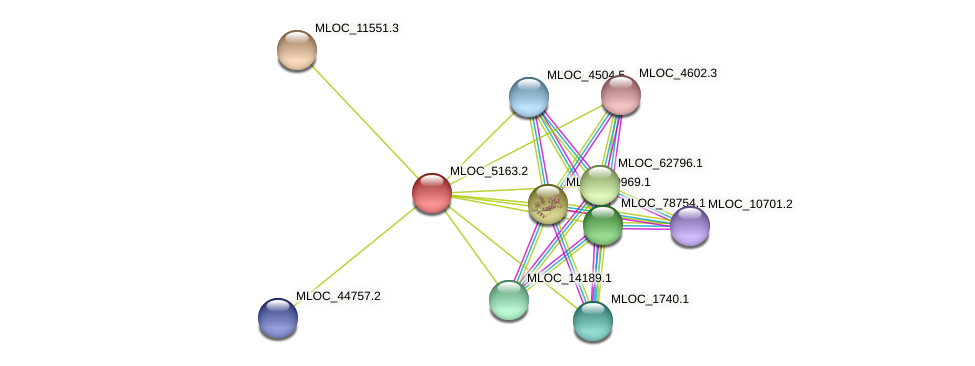 MLOC_5163.2 protein (Hordeum vulgare) - STRING interaction network