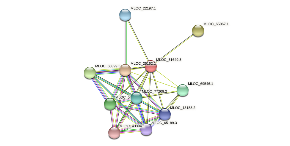 MLOC_51649.3 protein (Hordeum vulgare) - STRING interaction network