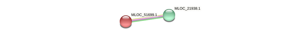 MLOC_51699.1 protein (Hordeum vulgare) - STRING interaction network