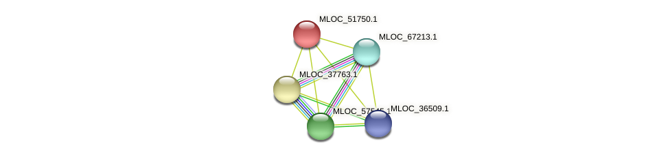 MLOC_51750.1 protein (Hordeum vulgare) - STRING interaction network