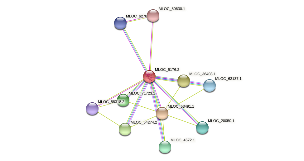 MLOC_5176.2 protein (Hordeum vulgare) - STRING interaction network