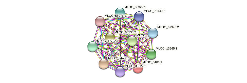 MLOC_5181.1 protein (Hordeum vulgare) - STRING interaction network