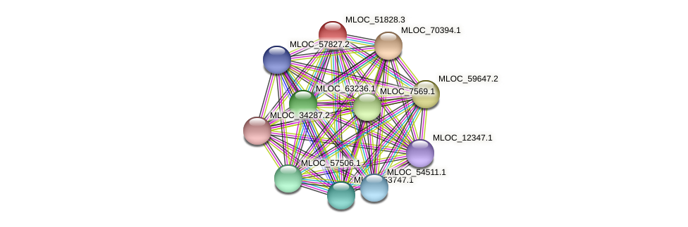 MLOC_51828.3 protein (Hordeum vulgare) - STRING interaction network