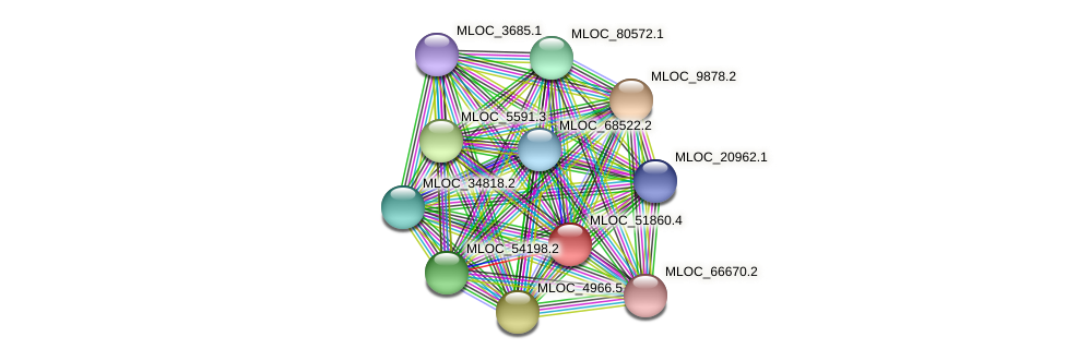 MLOC_51860.4 protein (Hordeum vulgare) - STRING interaction network