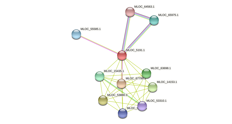 MLOC_5191.1 protein (Hordeum vulgare) - STRING interaction network