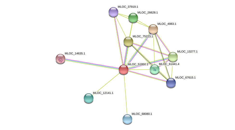 MLOC_51950.1 protein (Hordeum vulgare) - STRING interaction network