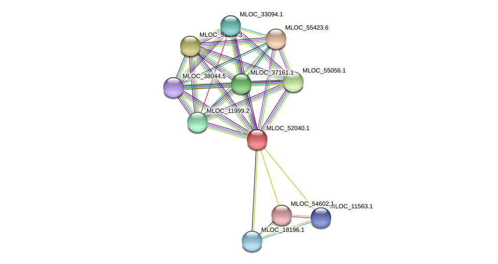 MLOC_52040.1 protein (Hordeum vulgare) - STRING interaction network