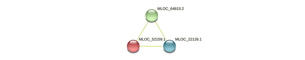 MLOC_52159.1 protein (Hordeum vulgare) - STRING interaction network
