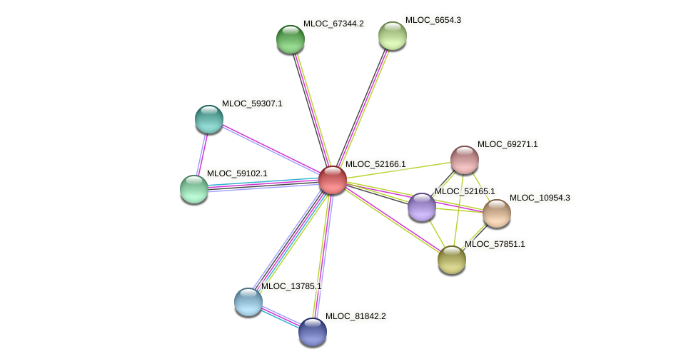 MLOC_52166.1 protein (Hordeum vulgare) - STRING interaction network