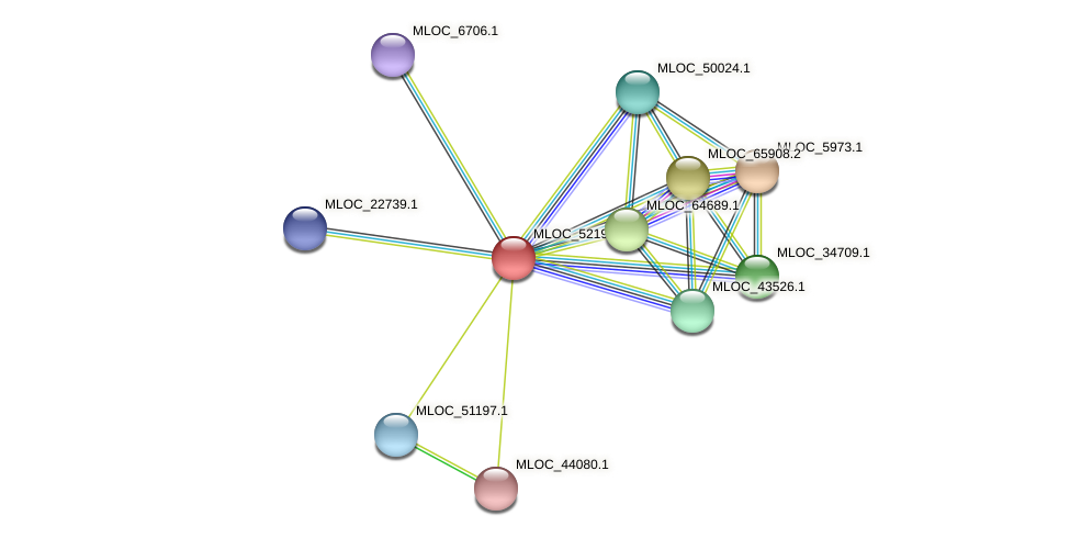 MLOC_52198.2 protein (Hordeum vulgare) - STRING interaction network