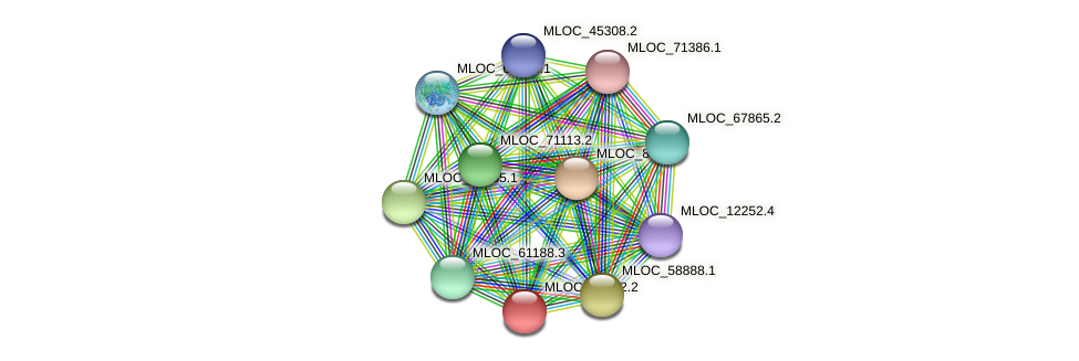 MLOC_52252.2 protein (Hordeum vulgare) - STRING interaction network