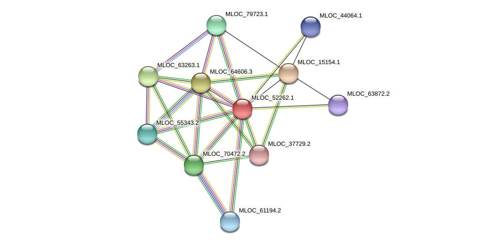 MLOC_52262.1 protein (Hordeum vulgare) - STRING interaction network