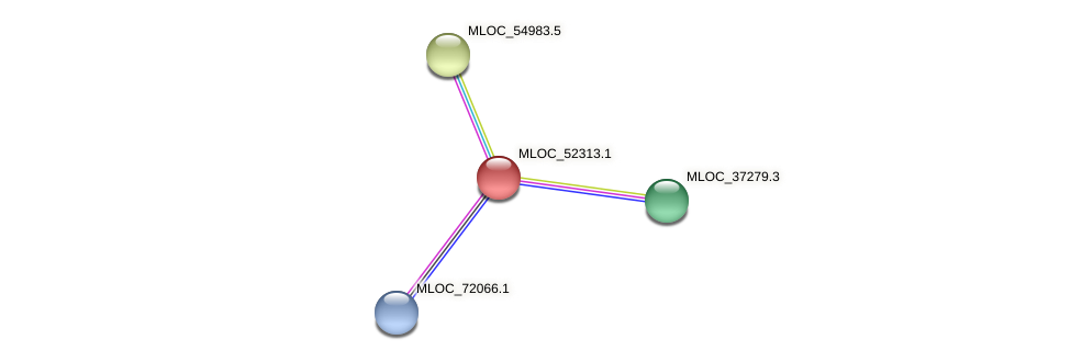 MLOC_52313.1 protein (Hordeum vulgare) - STRING interaction network