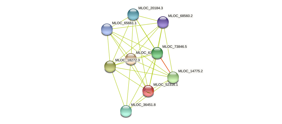 MLOC_52316.1 protein (Hordeum vulgare) - STRING interaction network