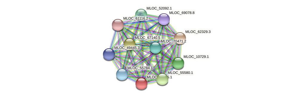 MLOC_52335.1 protein (Hordeum vulgare) - STRING interaction network