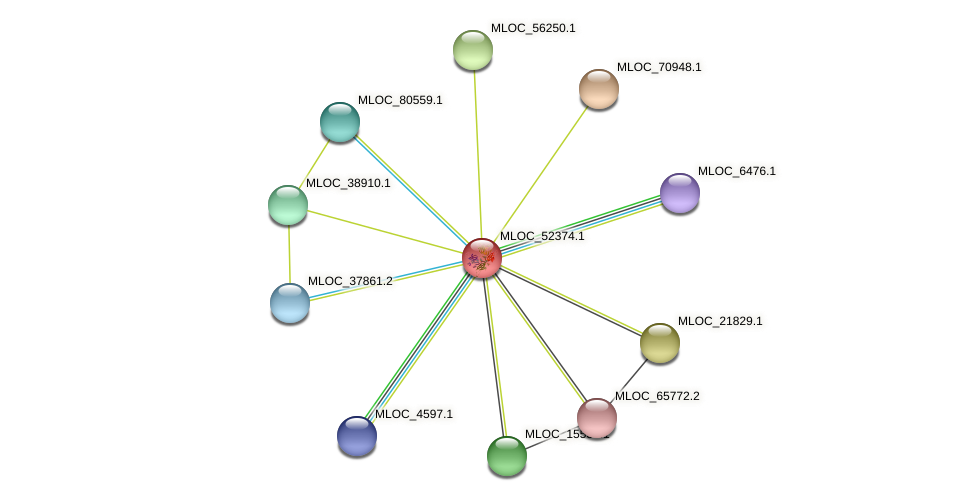 MLOC_52374.1 protein (Hordeum vulgare) - STRING interaction network