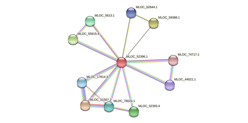 MLOC_52396.1 protein (Hordeum vulgare) - STRING interaction network