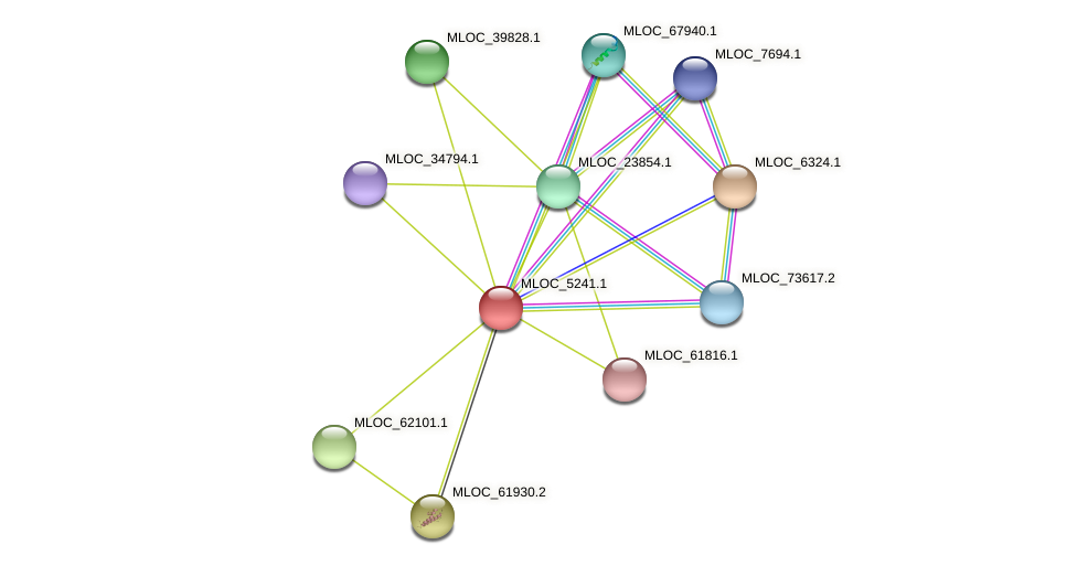 MLOC_5241.1 protein (Hordeum vulgare) - STRING interaction network