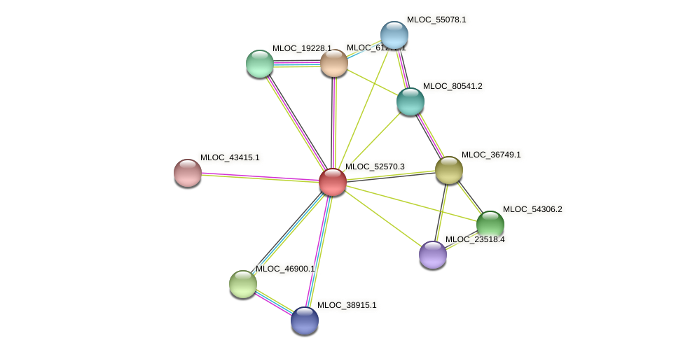 MLOC_52570.3 protein (Hordeum vulgare) - STRING interaction network