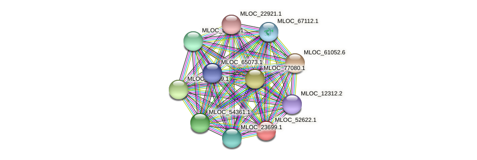 MLOC_52622.1 protein (Hordeum vulgare) - STRING interaction network
