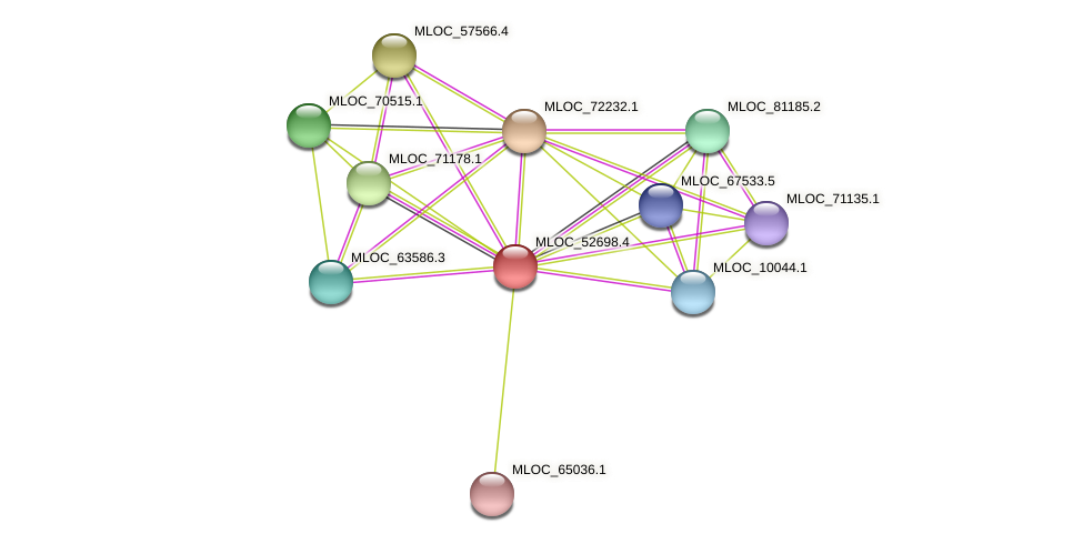 MLOC_52698.4 protein (Hordeum vulgare) - STRING interaction network