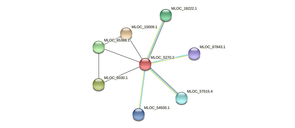 MLOC_5270.2 protein (Hordeum vulgare) - STRING interaction network