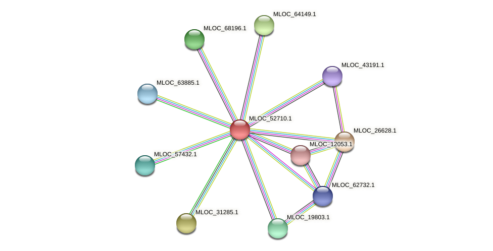 MLOC_52710.1 protein (Hordeum vulgare) - STRING interaction network