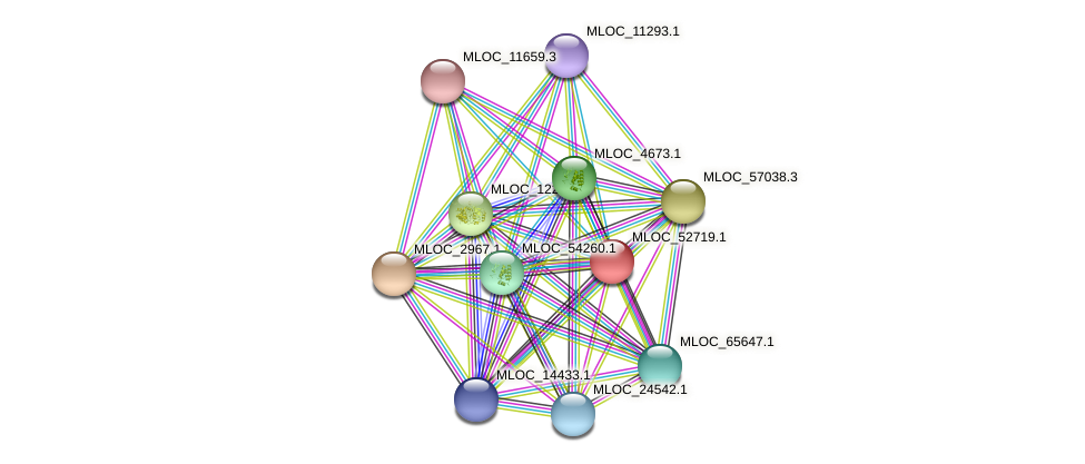 MLOC_52719.1 protein (Hordeum vulgare) - STRING interaction network