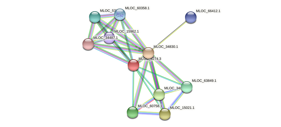 MLOC_5274.3 protein (Hordeum vulgare) - STRING interaction network