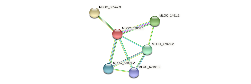 MLOC_52803.1 protein (Hordeum vulgare) - STRING interaction network