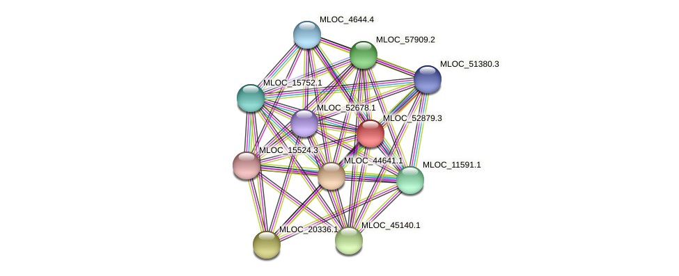 MLOC_52879.3 protein (Hordeum vulgare) - STRING interaction network