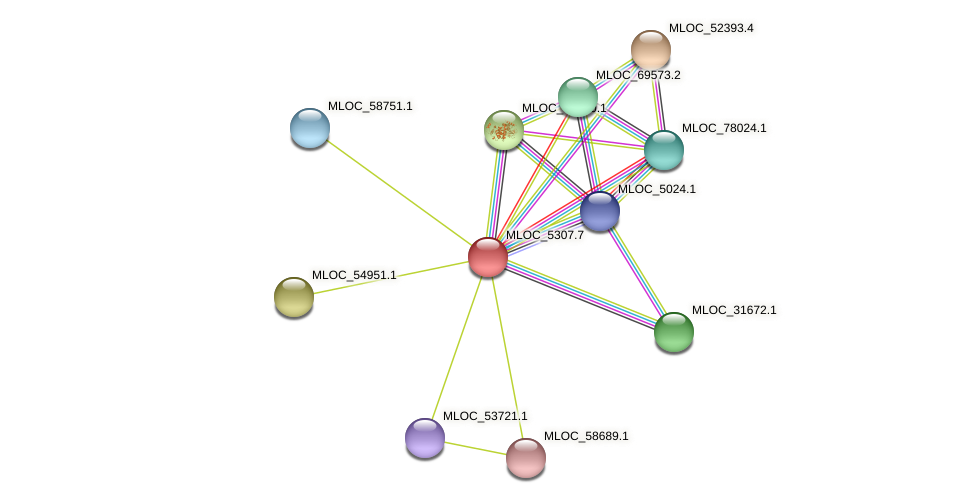 MLOC_5307.7 protein (Hordeum vulgare) - STRING interaction network