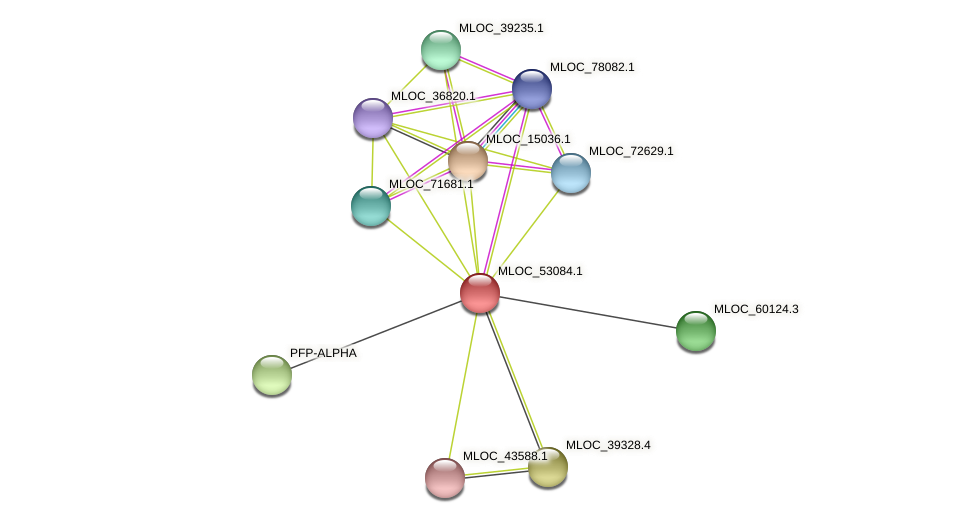 MLOC_53084.1 protein (Hordeum vulgare) - STRING interaction network